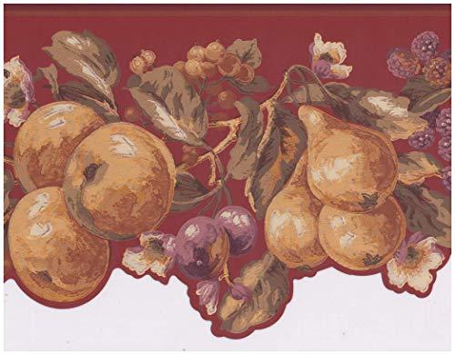York Vorpastiertes Wallpaper Border - Apfel Birne Pflaume Himbeere auf Rebe Ausgebogte Scarlet Red Wall Border Retro Design,Rollen 15 ft x 9 in. 9