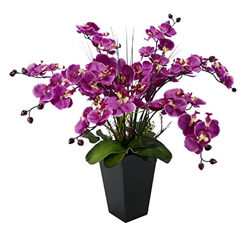 Orchideen-Arrangement ca 20