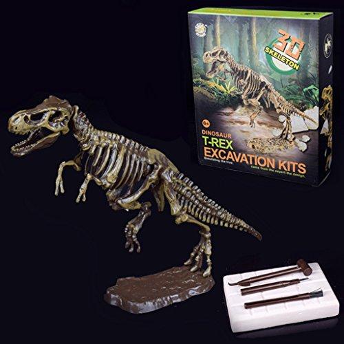 ZJL220 Discover Dinosaur Kit Skeleton Bones Model Excavation Archaeology Toy Kid Gift (Kit Dinosaur Model)