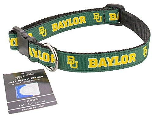 Bears Hundehalsband, Sm 1in w - Fits 8in-12in, grün ()