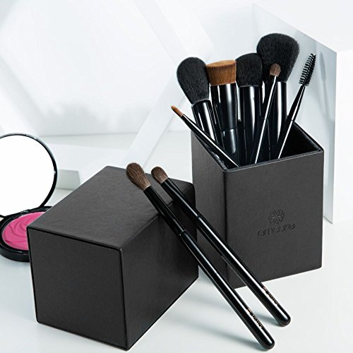 Make up Brushes, amoore Make up Brush with Holder Makeup Brushes Set Foundation Brush Powder Brush Eyeshadow Brush Lip Brush (9 Pcs, Black)