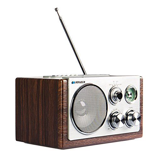 blaupunkt-rxn-19-retro-design-radio-ukw-mw-tuner-3-watt-usb-20