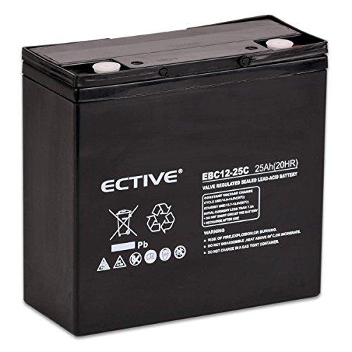 ECTIVE Bleiakku 12V 25Ah Zyklenfeste AGM Batterie Blei Akku EBC-Serie in 13 Varianten: 25Ah - 280Ah (wartungsfrei)