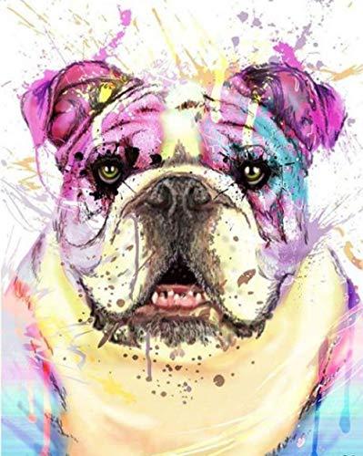 dbzlp malen mit Diamanten voller Bulldogge Mosaik Diamant voller 5d Diamant malen Neuankömmlinge