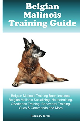 Belgian Malinois Training Guide Belgian Malinois Training Book Includes: Belgian Malinois Socializing, Housetraining, Obedience Training, Behavioral Training, ... Cues & Commands and More (English Edition)