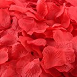 Bluestercool 1000 PC-Silk künstliche Rosenblätter Blumen-Hochzeit Favor Brautparty -Aisle Confetti Vase Dekor (Rot)