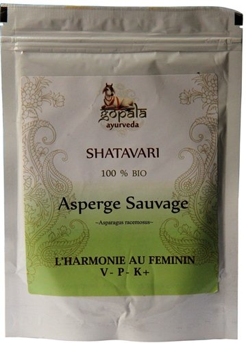 shatavari-asparagus-racemosus-bio-en-poudre-250-g-plante-ayurvedique-traditionnelle-pour-lharmanie-f