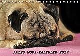 Alles Mops-Kalender 2019 (Tischkalender 2019 DIN A5 quer): Wunderbare Mopsmotive (Monatskalender, 14 Seiten ) (CALVENDO Tiere)