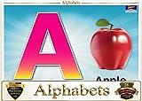 #7: Topper : Kiddies Flash Cards - Alphabet ABC....
