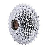D DOLITY Cassette de Pignon pour Vélo Tout-terrain 11-32T Argent, 9 Vitesse