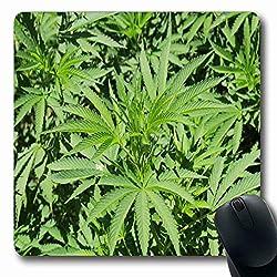 Luancrop Mousepads für Computer Dope Green Anbau Real Marihuana Pflanze Droge Cannabis Marihuana Naturmissbrauch Süchtig Design rutschfeste Oblong Gaming Mouse Pad