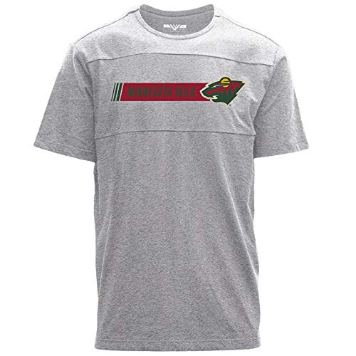 Levelwear Herren T-Shirt NHL Disrupt Hybrid Stripe, Herren, Disrupt Hybrid Stripe Mens Tee, Heather Pebble, Small -
