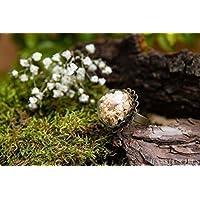 Anillo de gipsófila- Joya con flores secas naturales - Anillo ajustable flor de novia bohemio - Semiesfera de vidrio - 20mm - Regalos originales para mujer - Cumpleaños - Regalo Día de la Madre
