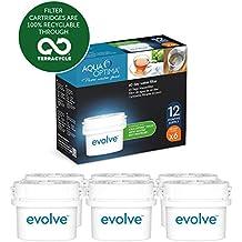 Aqua Optima EVD602 Evolve - Paquete de 1 año, filtros de agua de 6 x