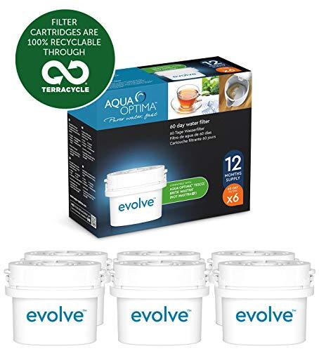 Aqua Optima EVD602 Evolve - Paquete de 1 año, filtros de agua de 6 x 60 días, Fit * BRITA Maxtra (no * Maxtra +)