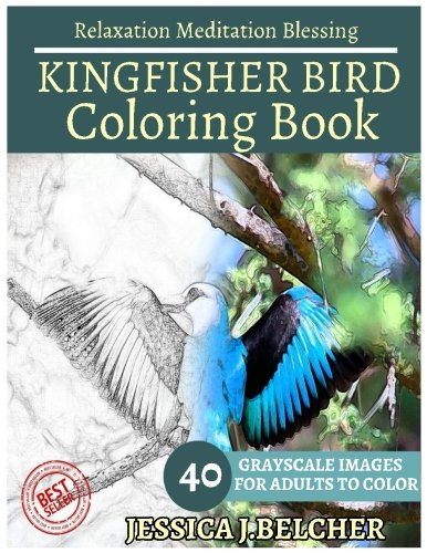 kingfisher-bird-coloring-book-for-adults-relaxation-meditation-blessing-animal-coloring-book-sketch-