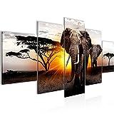 Bilder Afrika Elefant Wandbild 200 x 100 cm Vlies - Leinwand Bild XXL Format Wandbilder Wohnzimmer Wohnung Deko Kunstdrucke Gelb Grau 5 Teilig -100% MADE IN GERMANY - Fertig zum Aufhängen 007651a