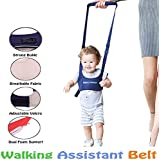 Kidsafe Child Walking Assistant (Blue)