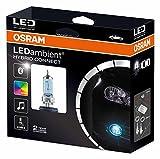 Osram LEDambient HYBRID CONNECT HB4, Offroad-Scheinwerferbeleuchtung, LEDEXT102-04, 12V, Faltschachtel (1 Stück)