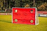 POWERSHOT® Torwand Fußball - Handball - verschiedene Größen - 4 Schusslöcher - Reisfest (Torwand 1,8 x 1,2m)