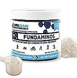 Best Amino Acids Powders - PureClean Performance Fundaminos - Jar Review