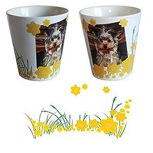 Blumentopf mit Foto im ausgewählten Design