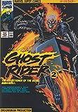 Ghost rider 2 暗黒街の処刑人 (マーヴルスーパーコミックス)