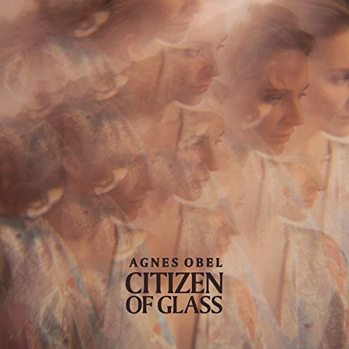 citizen-of-glass-vinilo