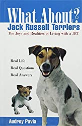 What about Jack Russell Terriers: The Joys and Realities of Living with a Jrt by Audrey Pavia (2003-11-06)