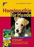 Homöopathie für Hunde: Natürlich heilen