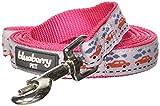 Blueberry Pet Größe M 2 cm by 150 cm Camping Unterwegs Pinke Basic Nylon-Hundeleinen, M, Passender Hundehalsband erhältlich separate