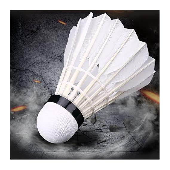 Feather Badminton ShuttleCocks (White)- Pack of 10