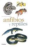 Anfibios Y Reptiles(Naturaleza-Animales)