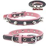 Newtensina Nieten Hundehalsband Reflektierend Welpenhalsband für Kleine Hunde - Pink - M