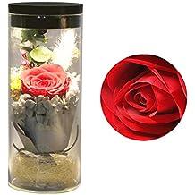 JJOBS Flor eterna preservada Fresco Flor de Cristal de la Cubierta Flores Coloridas con la luz