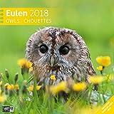 Eulen 30x30 2018 - Ackermann Kunstverlag