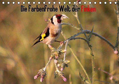 Die farbenfrohe Welt der Finken (Tischkalender 2017 DIN A5 quer): Einblicke in die Welt der Finken (Monatskalender, 14 Seiten) (CALVENDO Tiere)