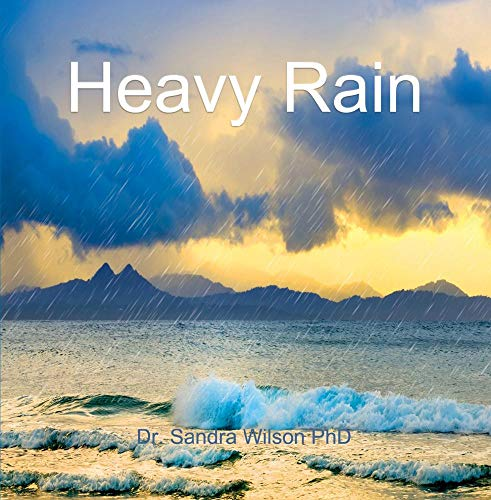 r Nature CD Pure Rainstorm High Quality Audio RELAXING ()