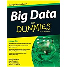 Big Data For Dummies.