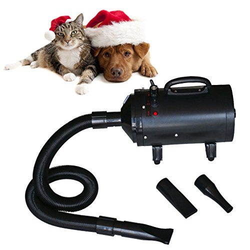 Secador de pelo con calentador para perros