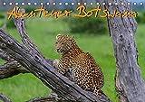 Abenteuer Botswana Afrika - Adventure Botswana (Tischkalender 2019 DIN A5 quer): Wildlife Kalender (Monatskalender, 14 Seiten ) (CALVENDO Tiere) - Frank Struckmann