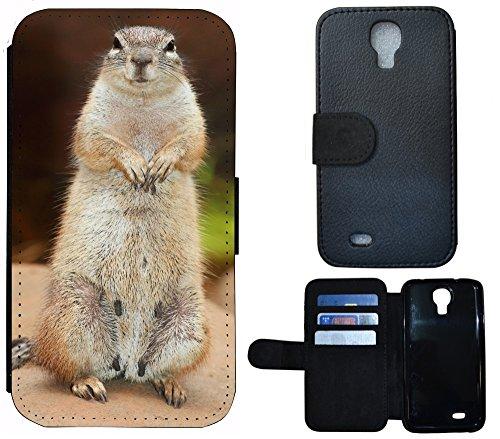 Schutz Hülle Flip Cover Handy Tasche Etui Case für (Apple iPhone 4 / 4s, 1170 Fussball Fußball Schwarz Gelb Feuer) 1177 Tier Grau Braun