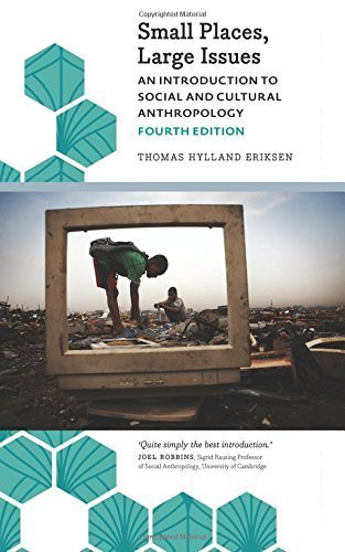 Small Places, Large Issues - Fourth Edition: An Introduction to Social and Cultural Anthropology (Anthropology, Culture and Society) by Thomas Hylland Eriksen (2015-08-20)