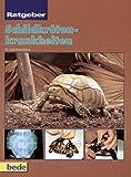 Ratgeber Schildkrötenkrankheiten