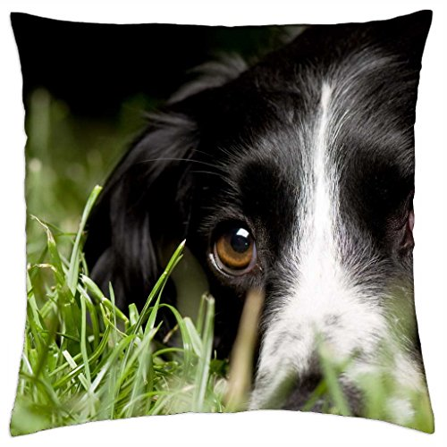 beyond-the-eyes-throw-pillow-cover-case-18-x-18