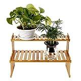 Support Plantes Etagère fleurs Echelle Escalier Porte-Plante Bois Exterieur Interieur,Support en Pot avec 2 Tablettes...