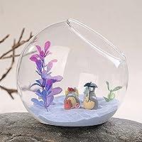 Artlass Tabletop Air Plant Terrarium Decorative Glass Globe Artificial Succulent Display Vase