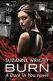 Burn (The Dark in You Book 1) (English Edition)