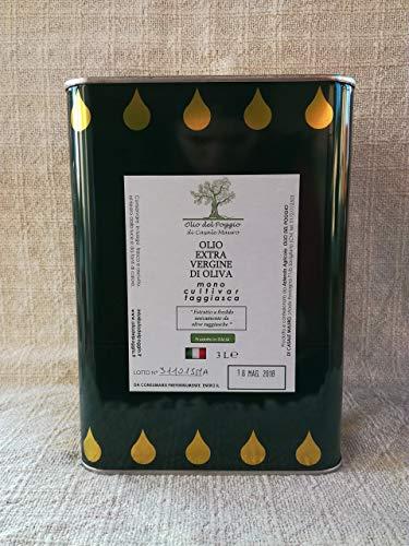Olio extravergine di oliva taggiasca - latta 3 litri- olio al naturale sano e genuino