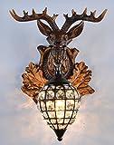 EFFORTINC Rustikales Hirschhorn Antler Wandleuchte 1 Leuchten